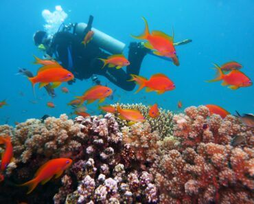 Why scuba diving in Colombia is one of the most underrated travel experiences