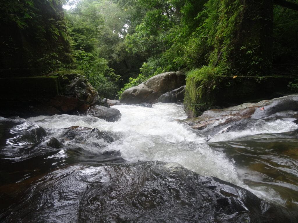 Waterfall Minca Colombia. South America Travel Photos and Comment Page.