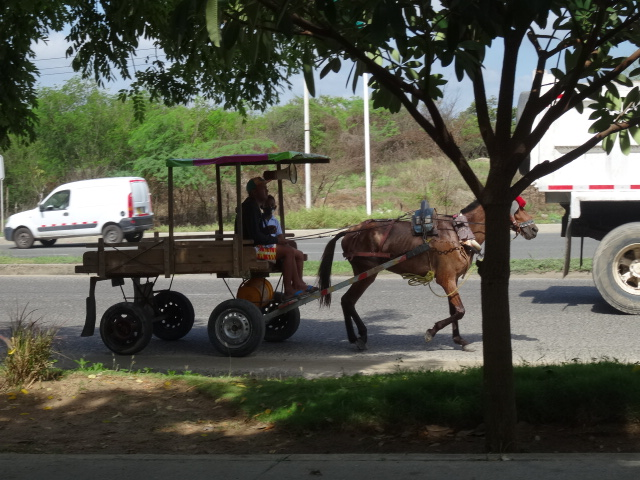 horse and Fruit Cart Barranquilla Colombia used in the article, Driving in Colombia. Things you Should Know